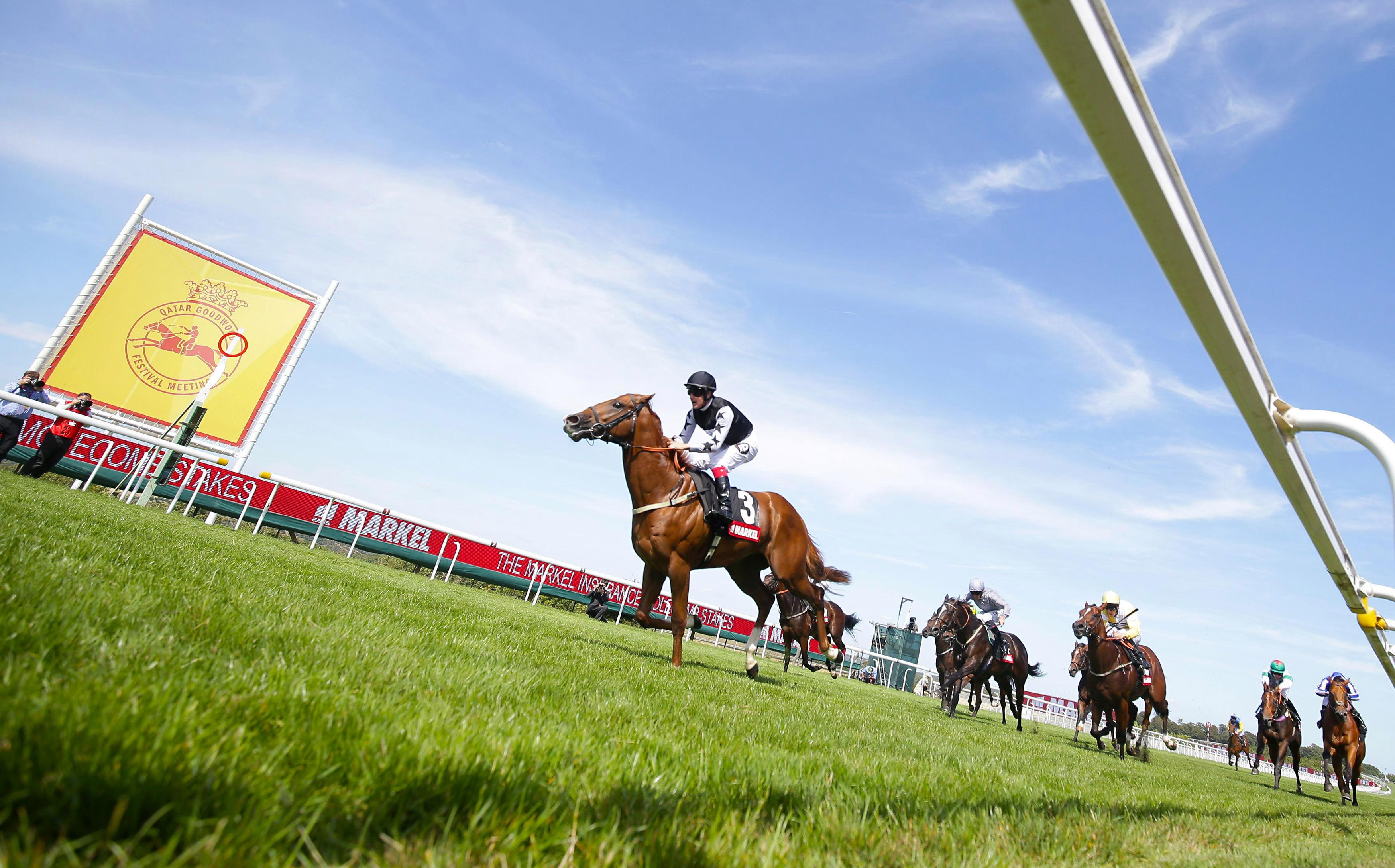 Glorious Goodwood tips: Templegate's racing tips for all of ITV's