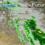 Saskatchewan weather outlook: much-needed rain on the way